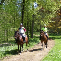 Bridleways & links to other trails