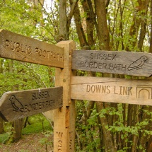 Paths to the West Sussex Literary Trail & Downs Link